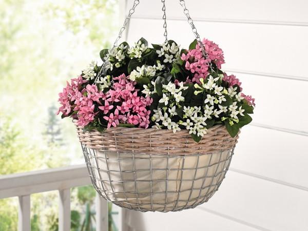 Cos flori suspendat – cod:101671